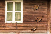 Old wooden Window in Thai style — Stock Photo