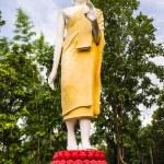 Standing Buddha statue — Stock Photo #37323217