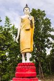 Stående buddha staty — Stockfoto