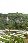 Hmong' garden farm near siribhum waterfall — Stock Photo