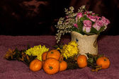 Still life - Tangerines , chrysanthemum withered And Plastic — Foto Stock