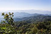 Morning View from Mountain, Pha Daeng National Park in Chiangmai — Stock Photo
