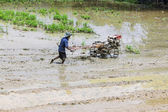 Asia Farmer using tiller tractor in rice field — Photo