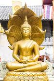 Estatua dorada de buda en templo tailandés — Foto de Stock
