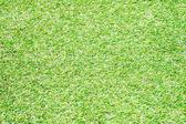 Textura de hierba — Foto de Stock