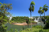 Iguazu falls view from Argentina  — Foto de Stock