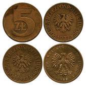 Five zlotych, Polish Public Republic, 1977-1986 — Stock Photo