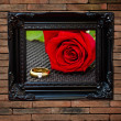 Flower in picture frame on brickwall — Stock Photo