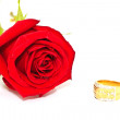 Rings on a background of roses  — Stok fotoğraf