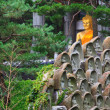 Buddha Statue in south korea — Stock Photo