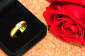 Rings on a background of roses — Foto de Stock