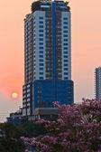 Buildings of bangkok,Thailand at sunset. — Foto Stock