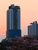 Buildings of bangkok,Thailand at sunset. — Stock Photo