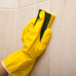 Stock Photo: Cleaning and doing housework