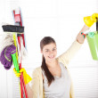 House cleaning — Stock Photo #39194307