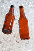 Beer bottles — Stock Photo