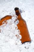 Bierflessen — Stockfoto