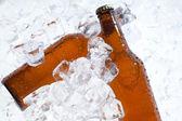 Bira şişeleri — Stok fotoğraf