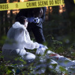 Crime Scene Investigation — Stock Photo #39213247