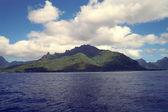 Nueva zelanda — Foto de Stock