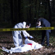 Crime Scene Investigation — Stock Photo #39440305