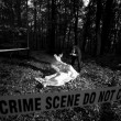 Crime Scene Investigation — Stock Photo #39440377