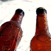 Beer bottles beeing cooled down — Stock Photo