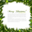 Branch of Christmas tree on white background. Vector illustration. — Imagen vectorial