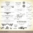 Vector set: calligraphic design — Stock Vector