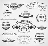 Vintage design elements — Stock Vector