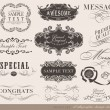 Calligraphic design elements — Vektorgrafik