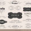 Calligraphic design elements — Imagen vectorial