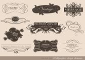 Elementy projektu kaligraficzne — Wektor stockowy