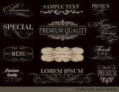 Calligraphic design elements — Stock Vector