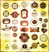 Set of retro vintage labels and ribbons — Stock Vector