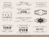 Calligraphic design elements, page decoration — Stock Vector