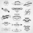Vintage design elements — Imagen vectorial
