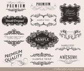 Calligraphic design elements, page decoration — Stockvector