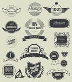Label, typografie, kalligrafische ontwerpelementen — Stockvector