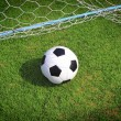 Soccer ball with green grass — Stok fotoğraf