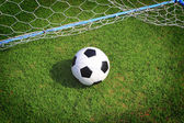Soccer ball with green grass — Stock Photo