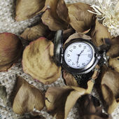 Orologio da tasca d'epoca con secco roose — Foto Stock