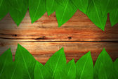Autumn background with colored leaves on wooden board — Stock Photo