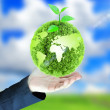 Green globe in hand — Stock Photo