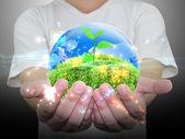 Groene plant in een hand — Stockfoto
