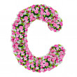 C, flower alphabet isolated on white with clipping path — Stock Photo
