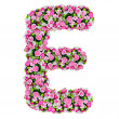 E, flower alphabet isolated on white with clipping path — Stock Photo
