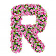 R, flower alphabet isolated on white with clipping path — Stock Photo