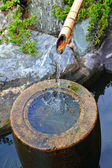Japanese home garden bamboo waterfall pond — Stok fotoğraf