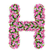 H, flower alphabet isolated on white with clipping path — Stock Photo